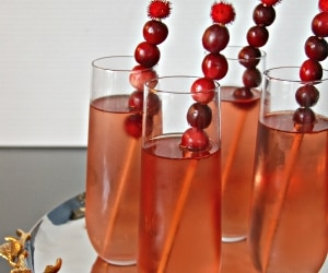 Cranberry Cocktails_feat