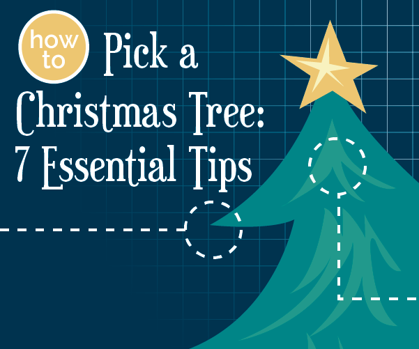 How to Pick a Christmas Tree: 7 Essential Tips