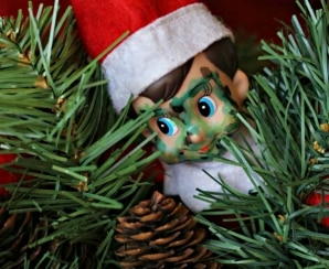 30 Funny & Easy Elf on the Shelf Ideas!