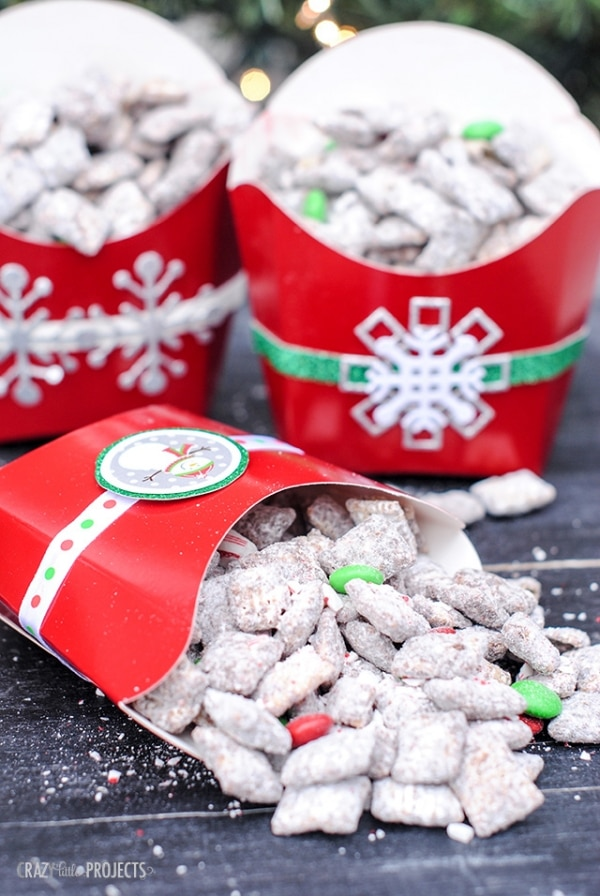 20 Tips for Packaging Christmas Cookies: Snack Pouches | thegoodstuff