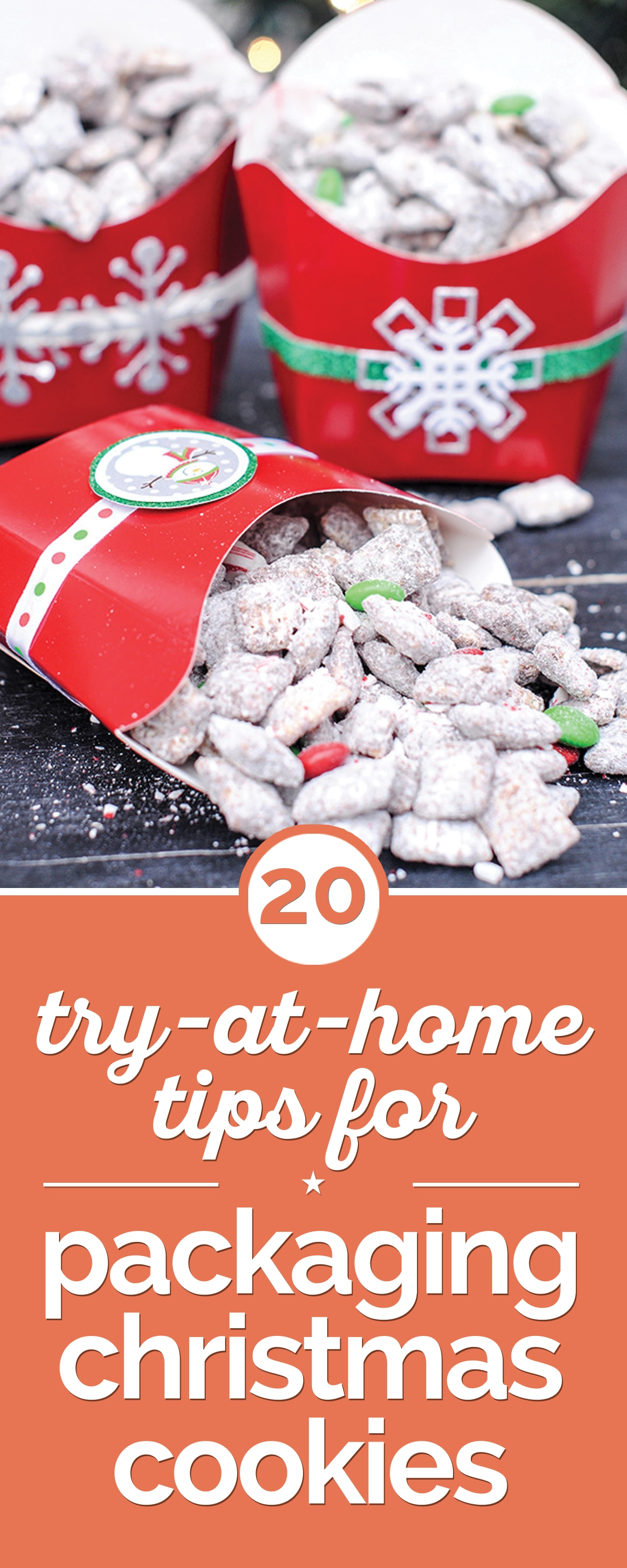 20 try at home tips for packaging christmas cookies thegoodstuff