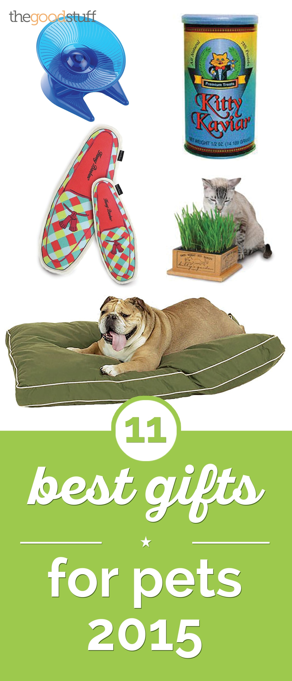 11 Best Gifts for Pets 2015 | thegoodstuff