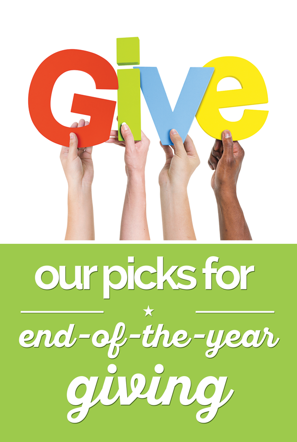 Our Picks for End-of-the-Year Giving | thegoodstuff