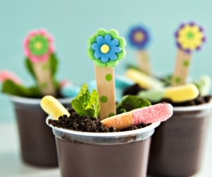 How to Make Daisy Pudding Dirt Cups for Kids! [Video] | thegoodstuff