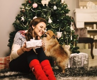 7 Ways to Keep Your Pets Happy & Healthy for the Holidays | thegoodstuff