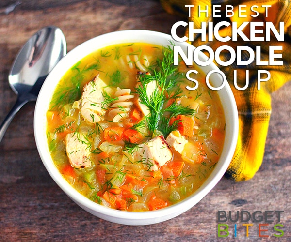 The Best Chicken Noodle Soup to Cozy up With on a Sick Day   thegoodstuff