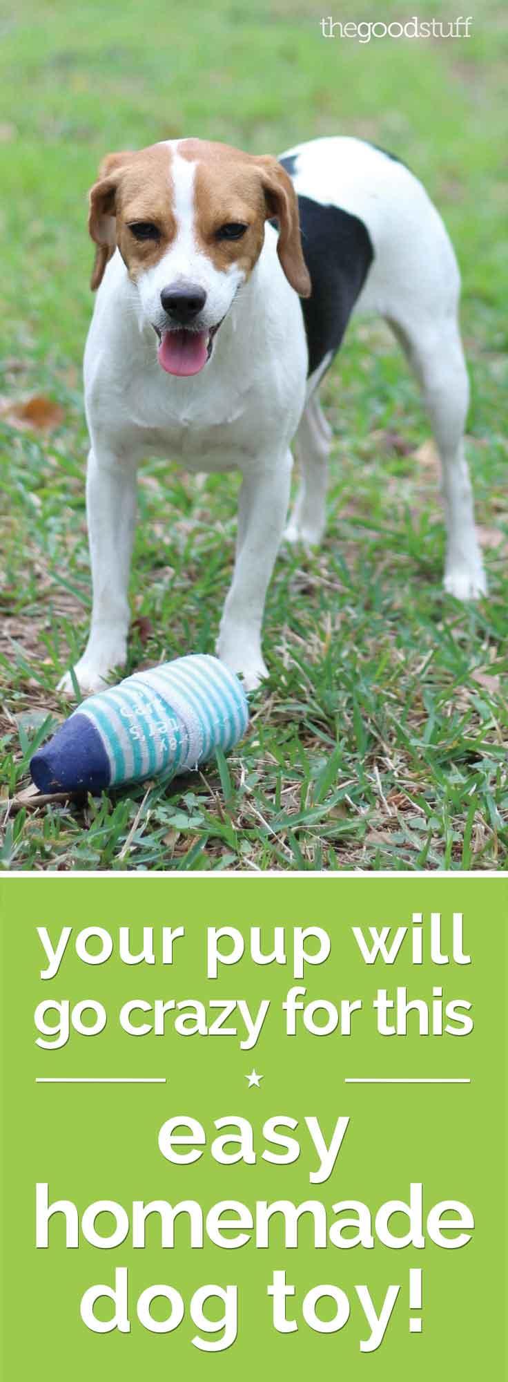 Homemade Dog Toys | thegoodstuff