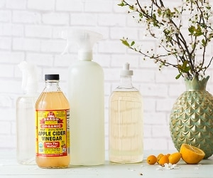 Apple Cider Vinegar Cleaning Solution | thegoodstuff