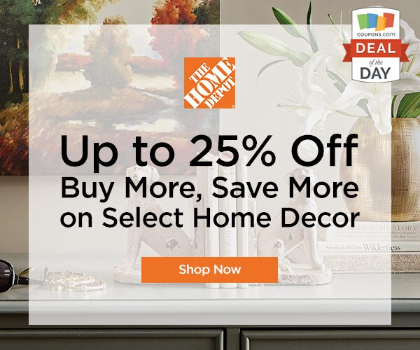 2e5679e6d5f Deal of the Day  Up to 25% Off at Home Depot - thegoodstuff